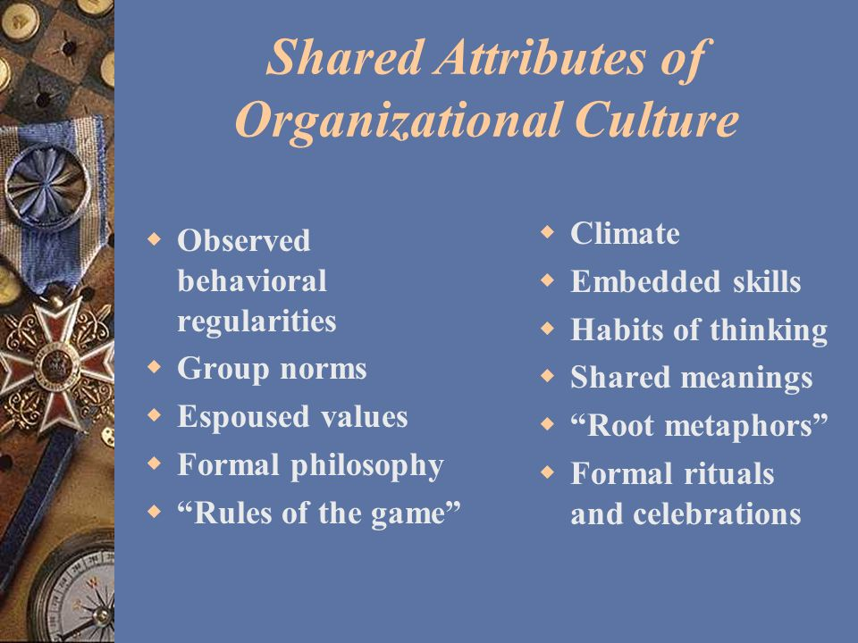 Shared Attributes of Organizational Culture