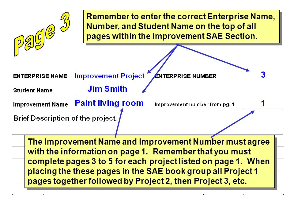 Page 3 Remember to enter the correct Enterprise Name, Number, and Student Name on the top of all pages within the Improvement SAE Section.