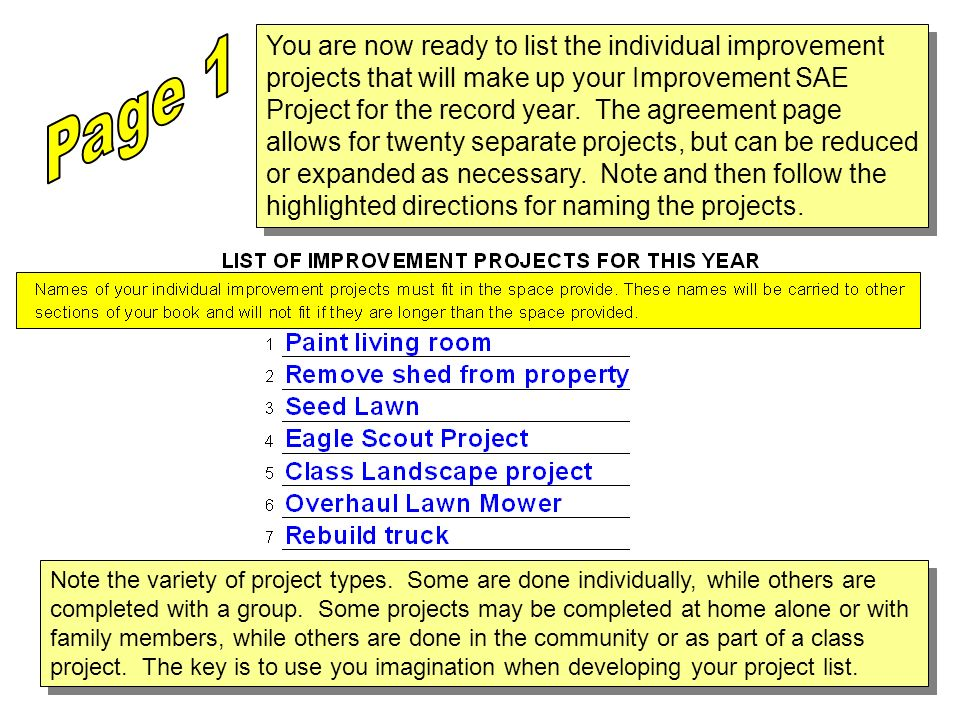 You are now ready to list the individual improvement projects that will make up your Improvement SAE Project for the record year. The agreement page allows for twenty separate projects, but can be reduced or expanded as necessary. Note and then follow the highlighted directions for naming the projects.