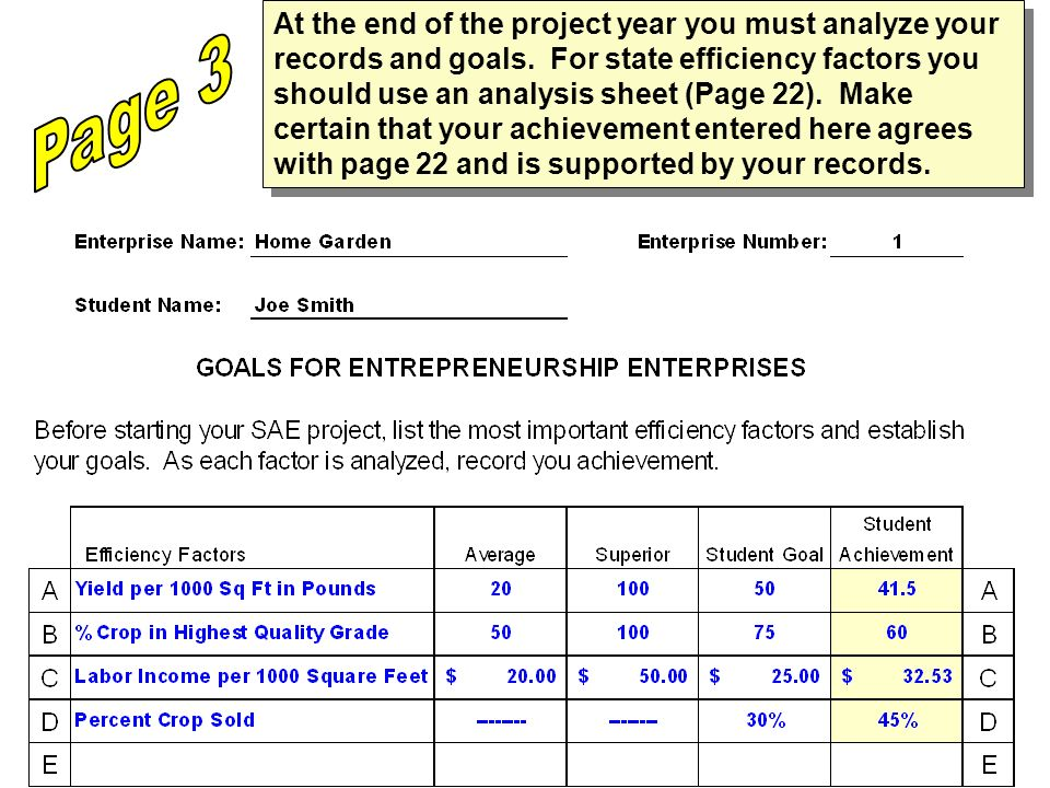 At the end of the project year you must analyze your records and goals