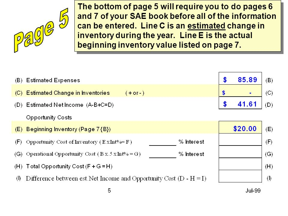 The bottom of page 5 will require you to do pages 6 and 7 of your SAE book before all of the information can be entered. Line C is an estimated change in inventory during the year. Line E is the actual beginning inventory value listed on page 7.