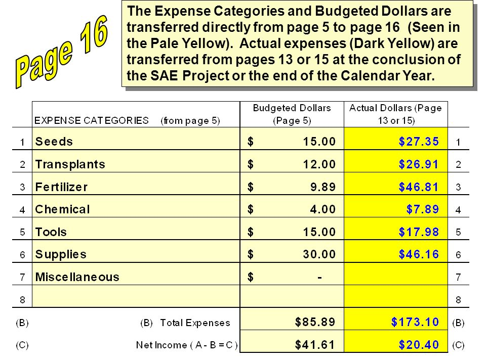 The Expense Categories and Budgeted Dollars are transferred directly from page 5 to page 16 (Seen in the Pale Yellow). Actual expenses (Dark Yellow) are transferred from pages 13 or 15 at the conclusion of the SAE Project or the end of the Calendar Year.