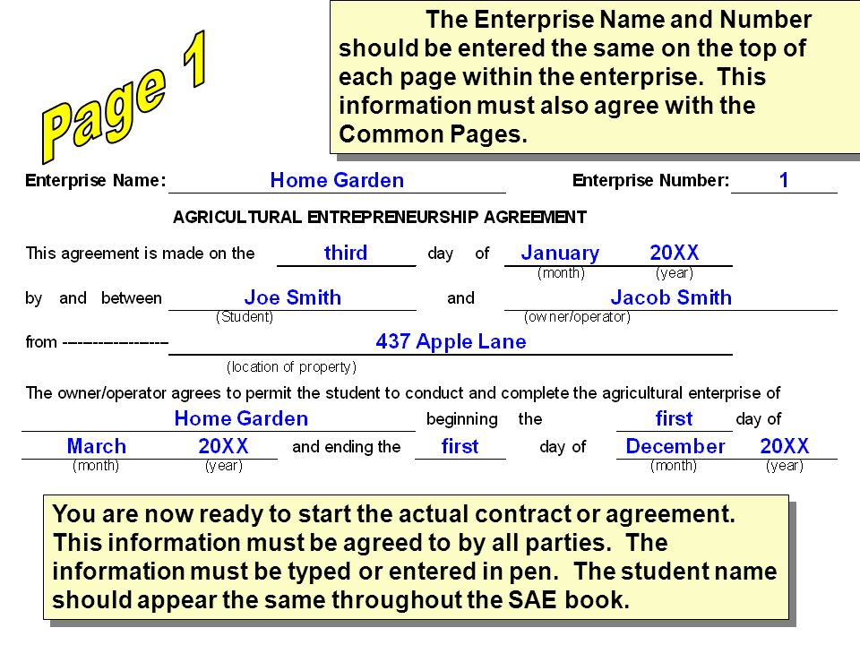 The Enterprise Name and Number should be entered the same on the top of each page within the enterprise. This information must also agree with the Common Pages.