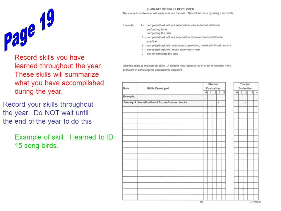 Page 19 Record skills you have learned throughout the year. These skills will summarize what you have accomplished during the year.