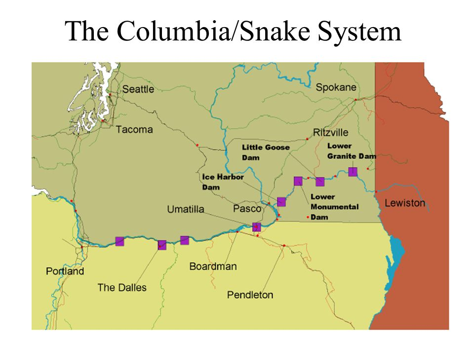 The Columbia/Snake System