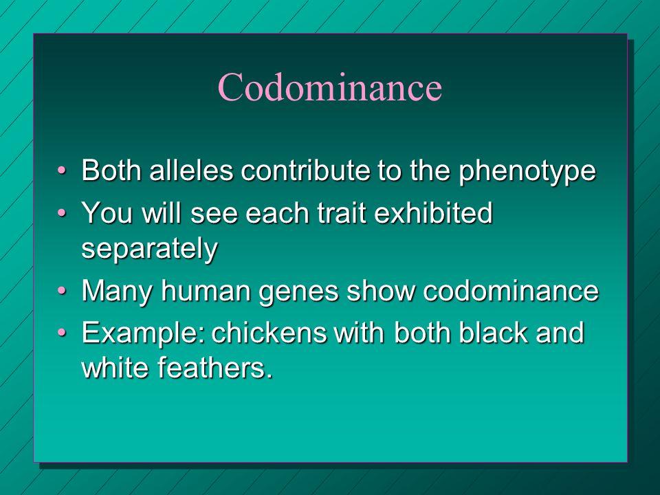 Codominance Both alleles contribute to the phenotype