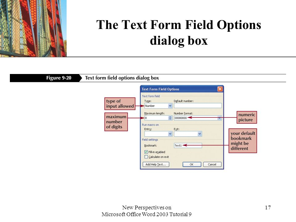 The Text Form Field Options dialog box
