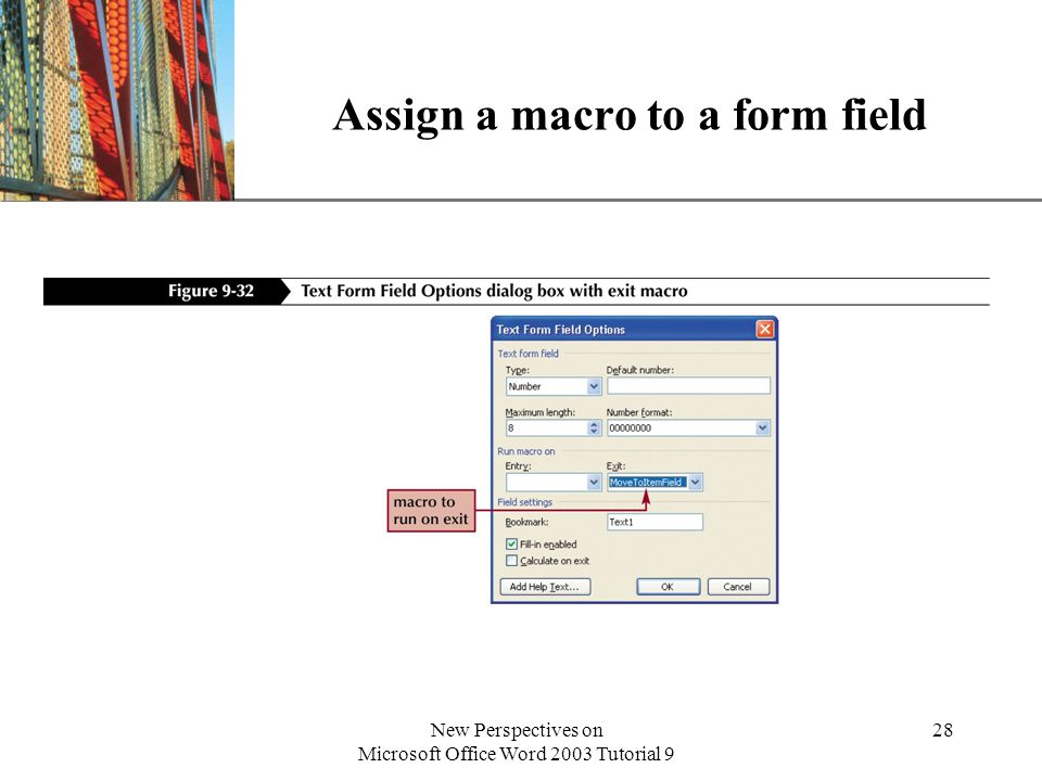 Assign a macro to a form field