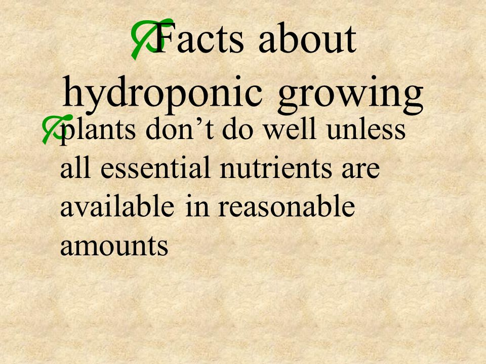 Facts about hydroponic growing