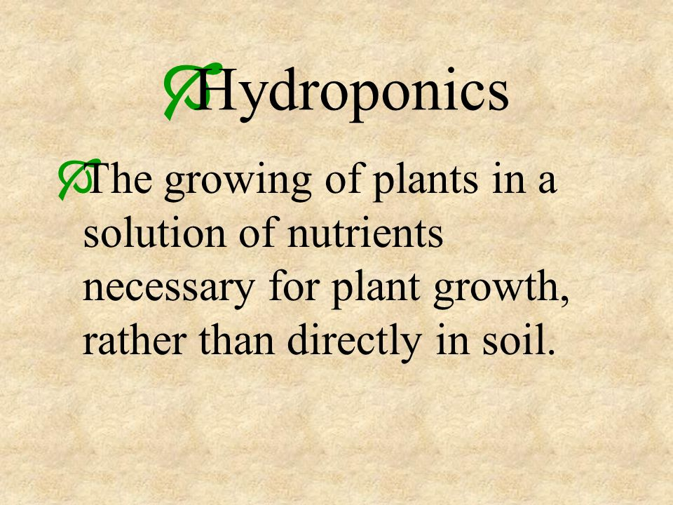 Hydroponics The growing of plants in a solution of nutrients necessary for plant growth, rather than directly in soil.