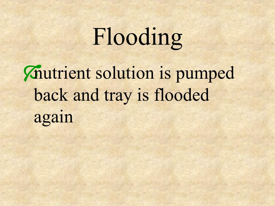 Flooding nutrient solution is pumped back and tray is flooded again