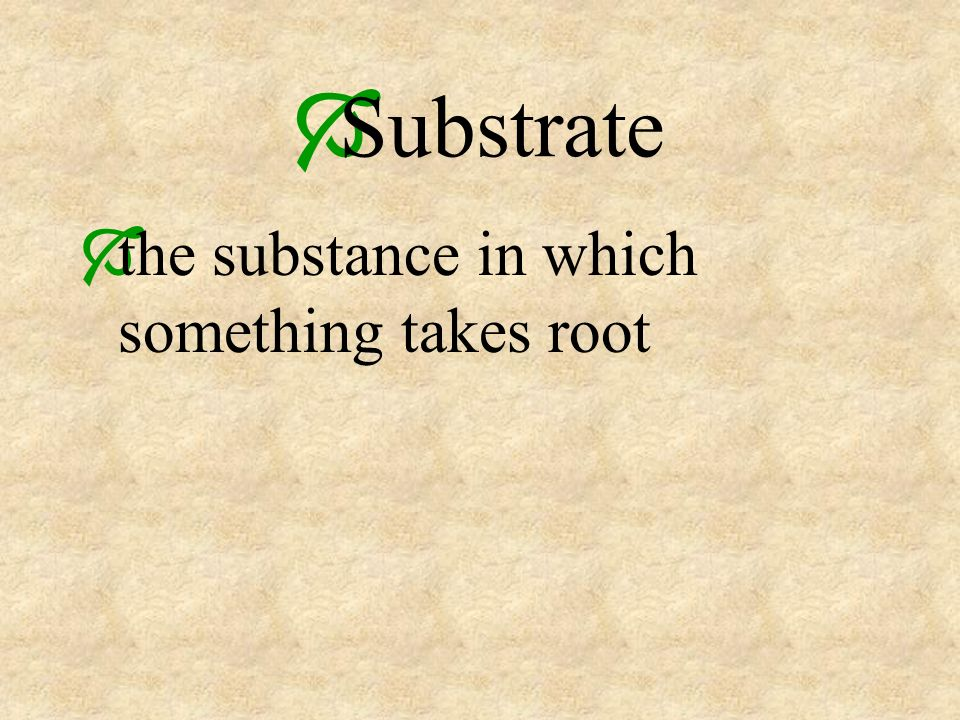 Substrate the substance in which something takes root
