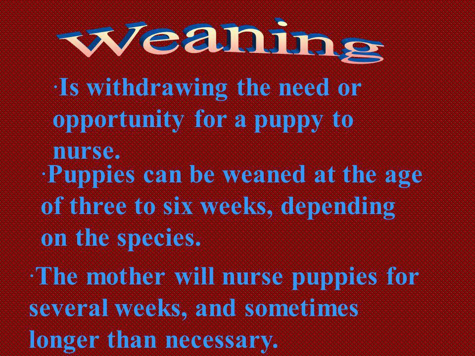 Is withdrawing the need or opportunity for a puppy to nurse.
