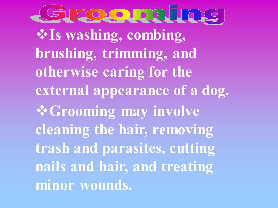 Grooming Is washing, combing, brushing, trimming, and otherwise caring for the external appearance of a dog.