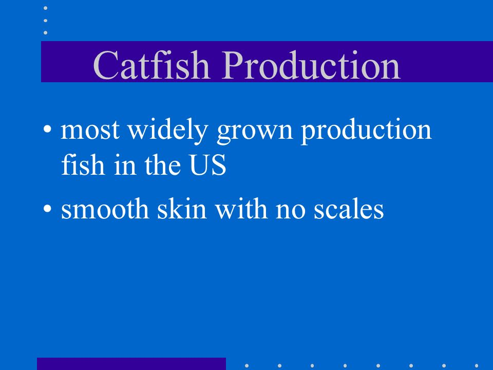 Catfish Production most widely grown production fish in the US