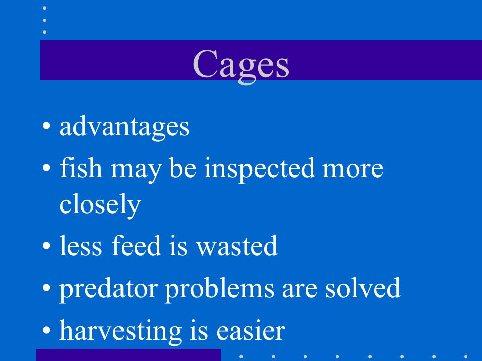 Cages advantages fish may be inspected more closely