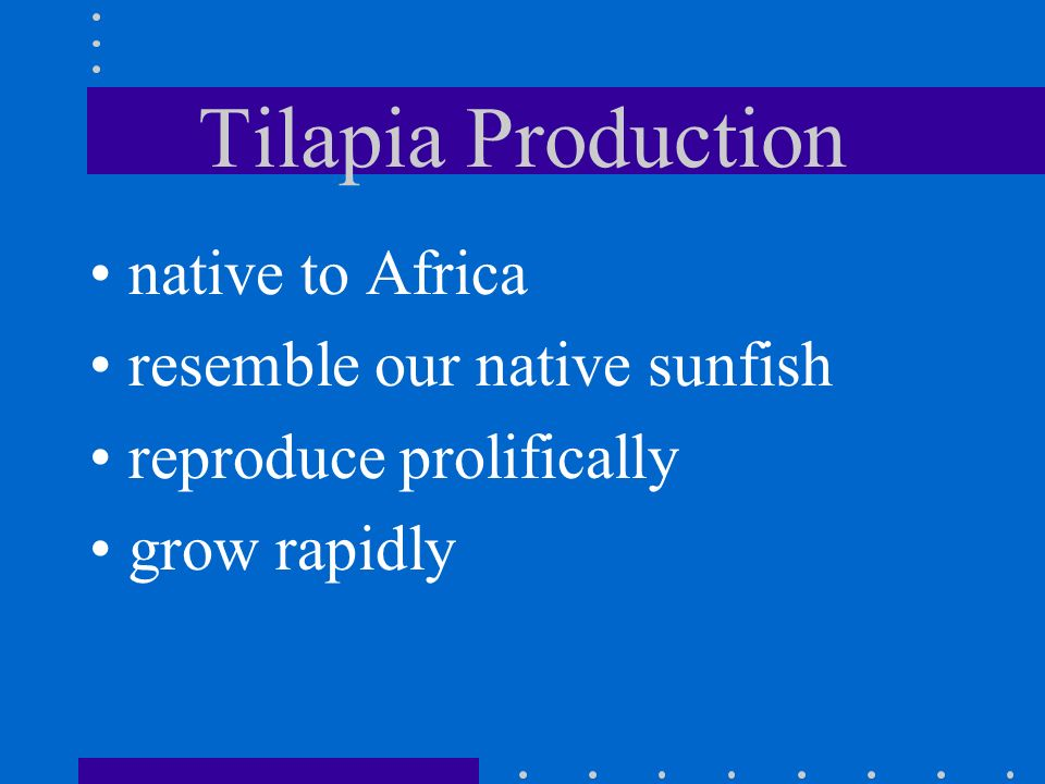 Tilapia Production native to Africa resemble our native sunfish