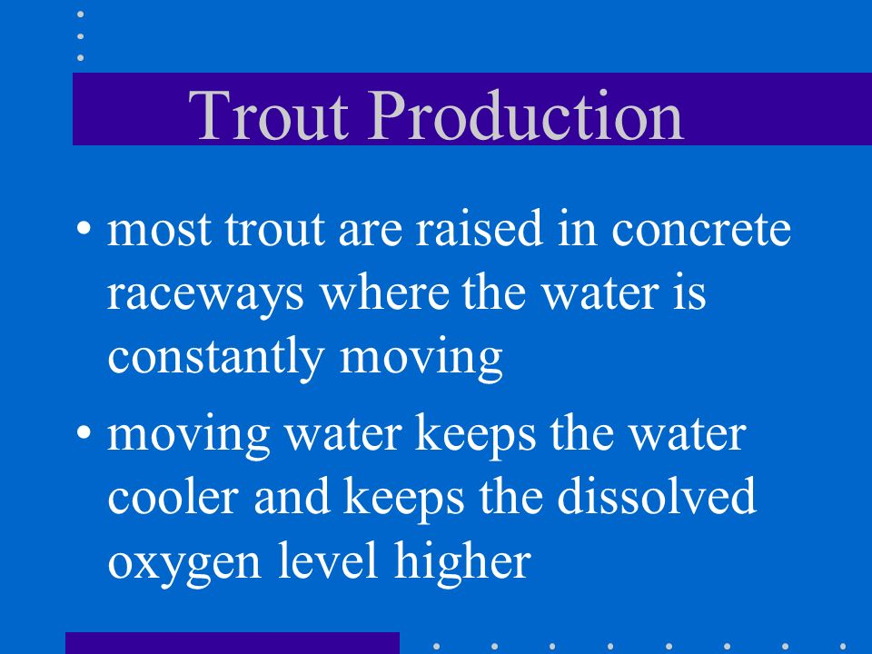Trout Production most trout are raised in concrete raceways where the water is constantly moving.