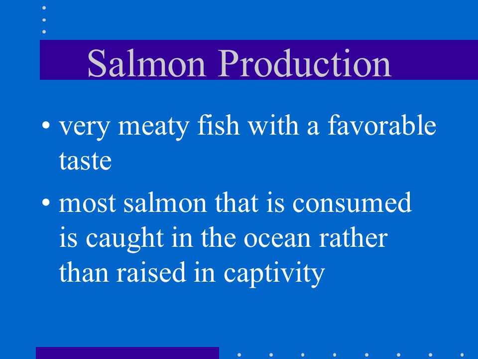 Salmon Production very meaty fish with a favorable taste