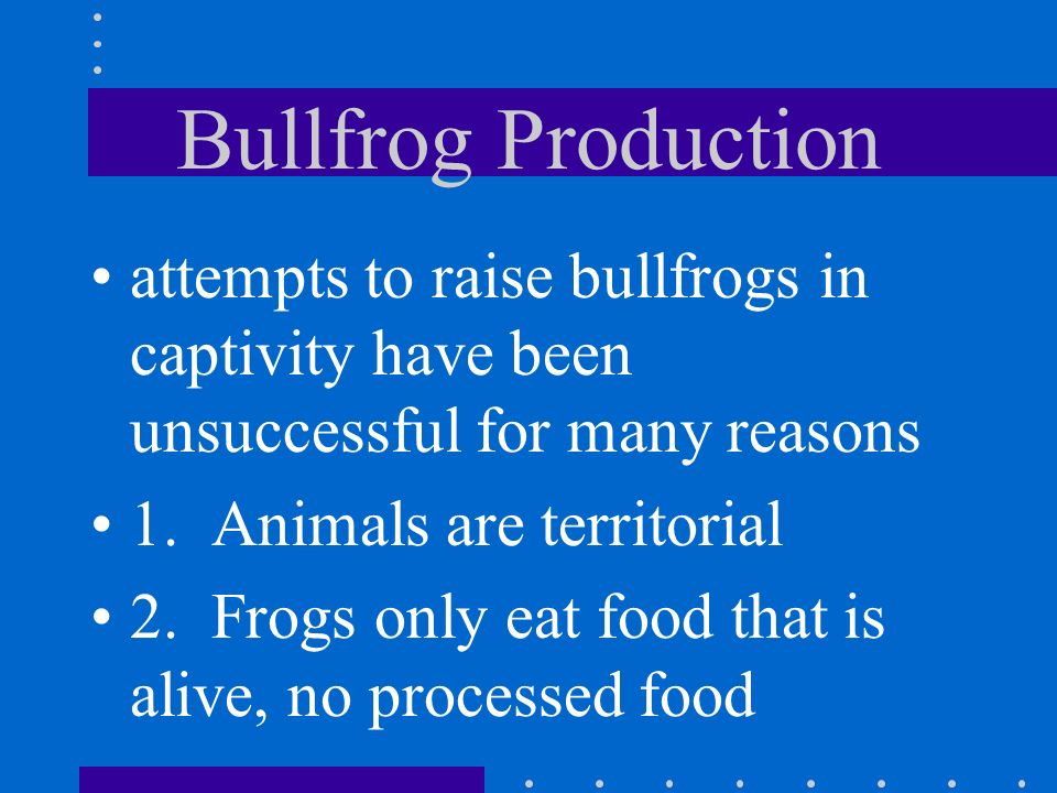 Bullfrog Production attempts to raise bullfrogs in captivity have been unsuccessful for many reasons.