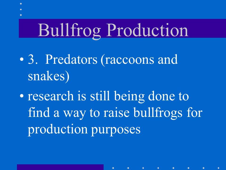 Bullfrog Production 3. Predators (raccoons and snakes)