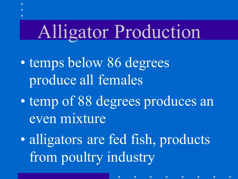 Alligator Production temps below 86 degrees produce all females