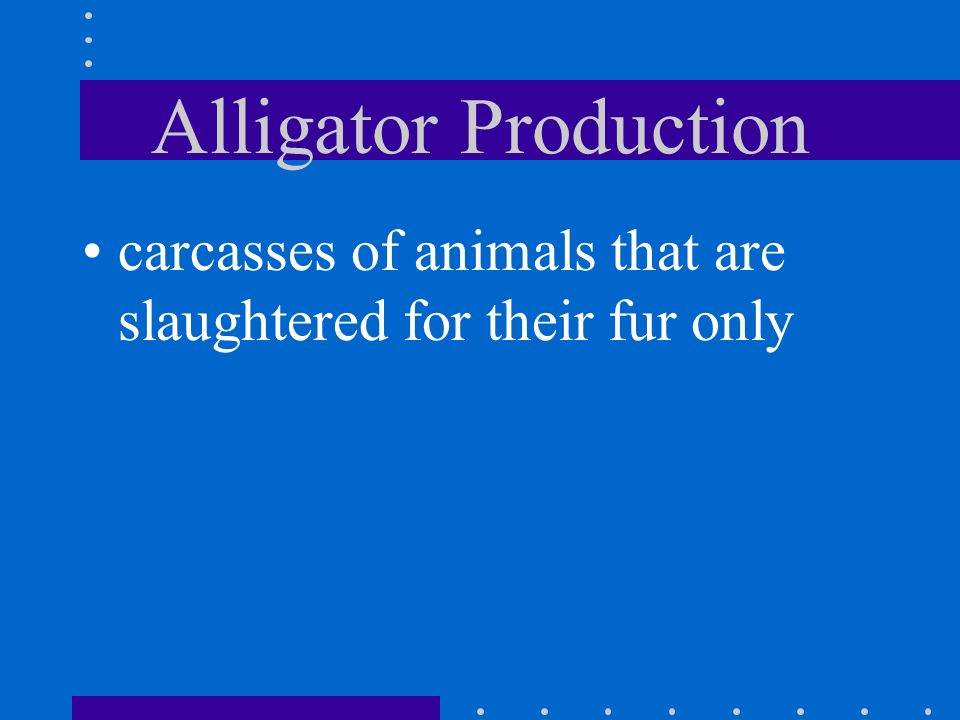 Alligator Production carcasses of animals that are slaughtered for their fur only