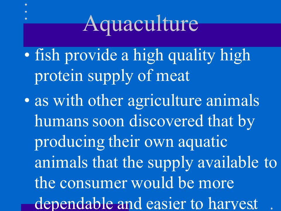 Aquaculture fish provide a high quality high protein supply of meat