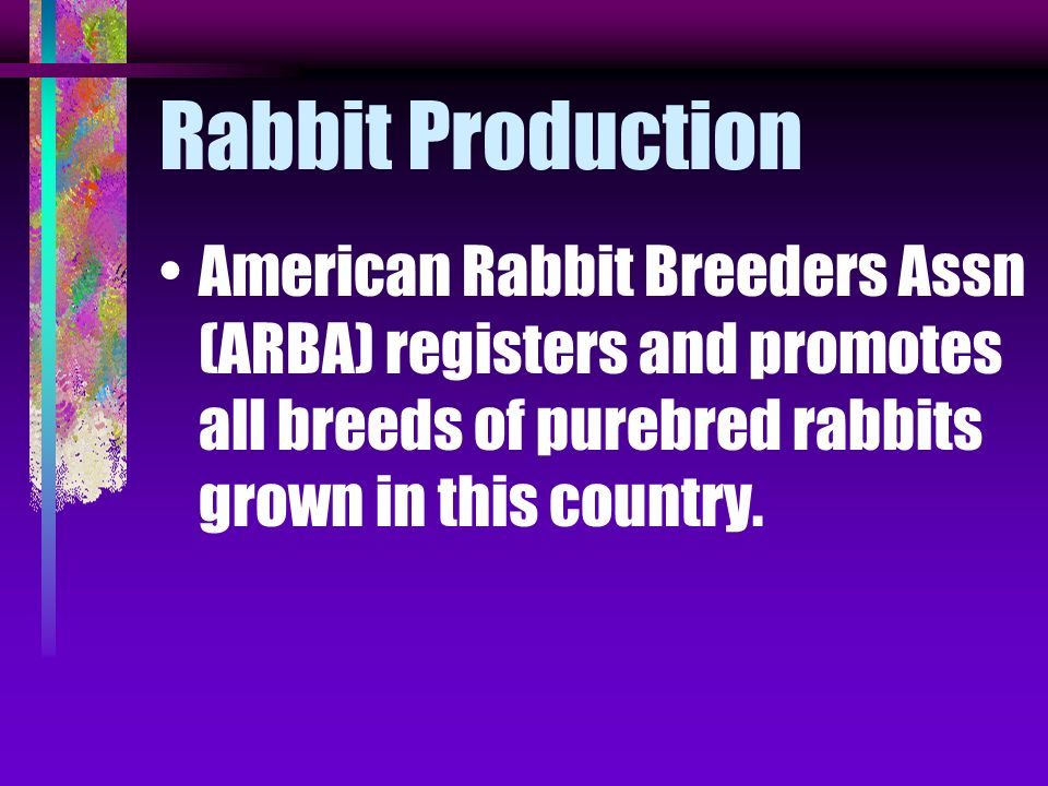 Rabbit Production American Rabbit Breeders Assn (ARBA) registers and promotes all breeds of purebred rabbits grown in this country.