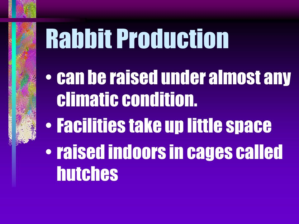 Rabbit Production can be raised under almost any climatic condition.