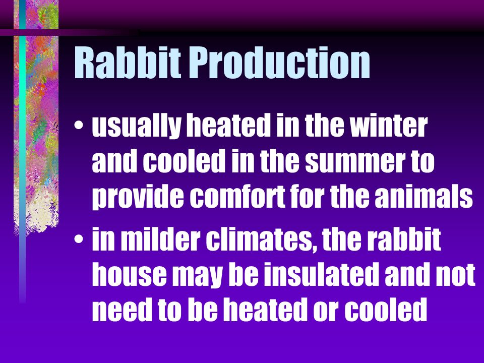 Rabbit Production usually heated in the winter and cooled in the summer to provide comfort for the animals.
