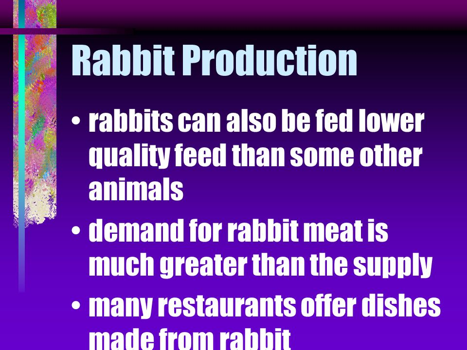 Rabbit Production rabbits can also be fed lower quality feed than some other animals. demand for rabbit meat is much greater than the supply.