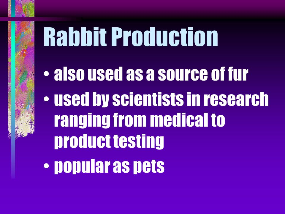 Rabbit Production also used as a source of fur