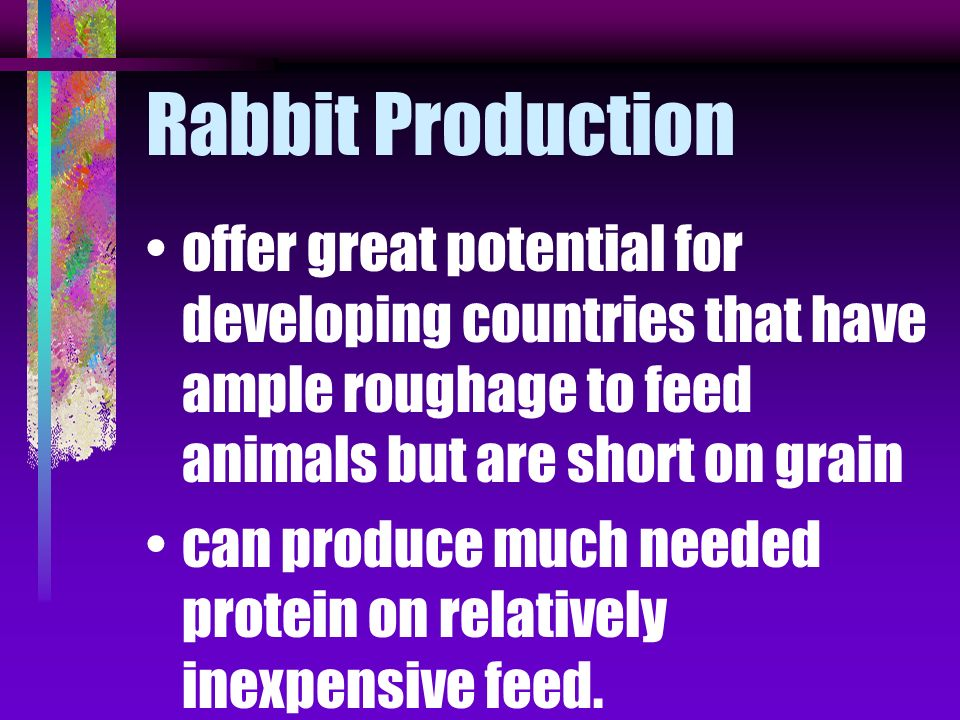 Rabbit Production offer great potential for developing countries that have ample roughage to feed animals but are short on grain.