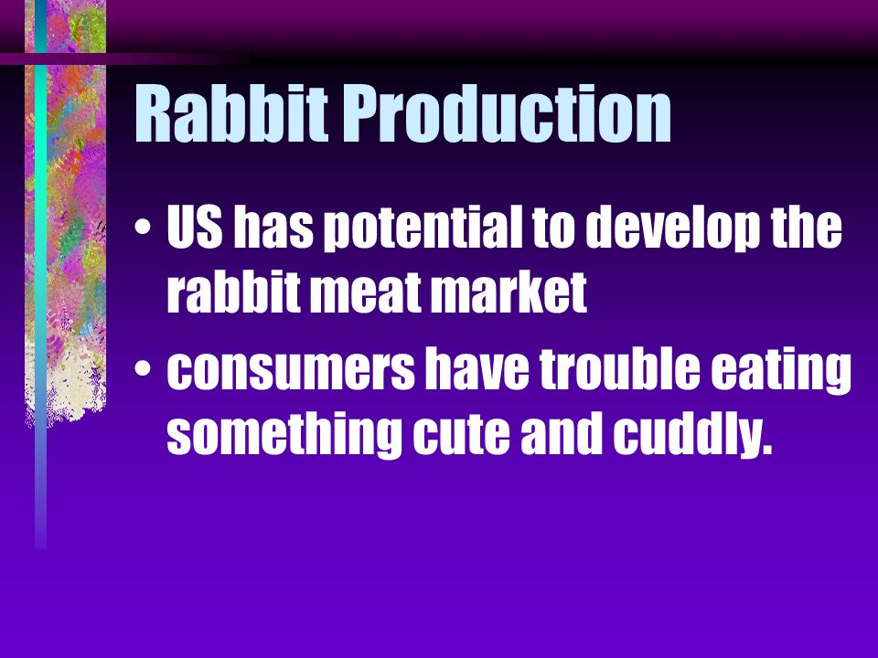 Rabbit Production US has potential to develop the rabbit meat market