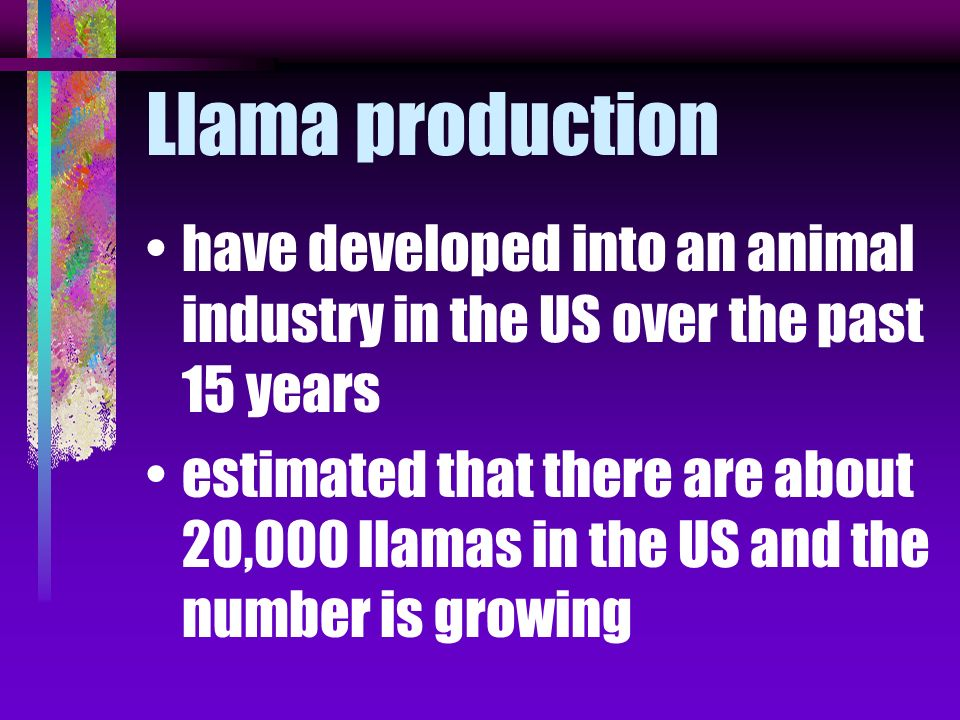 Llama production have developed into an animal industry in the US over the past 15 years.