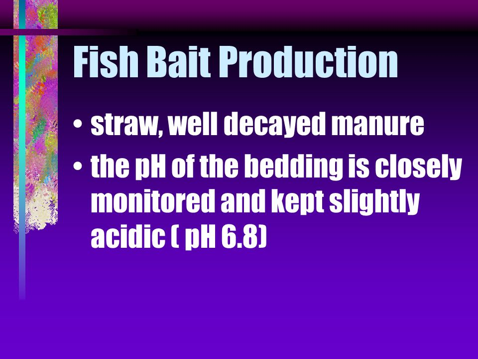 Fish Bait Production straw, well decayed manure