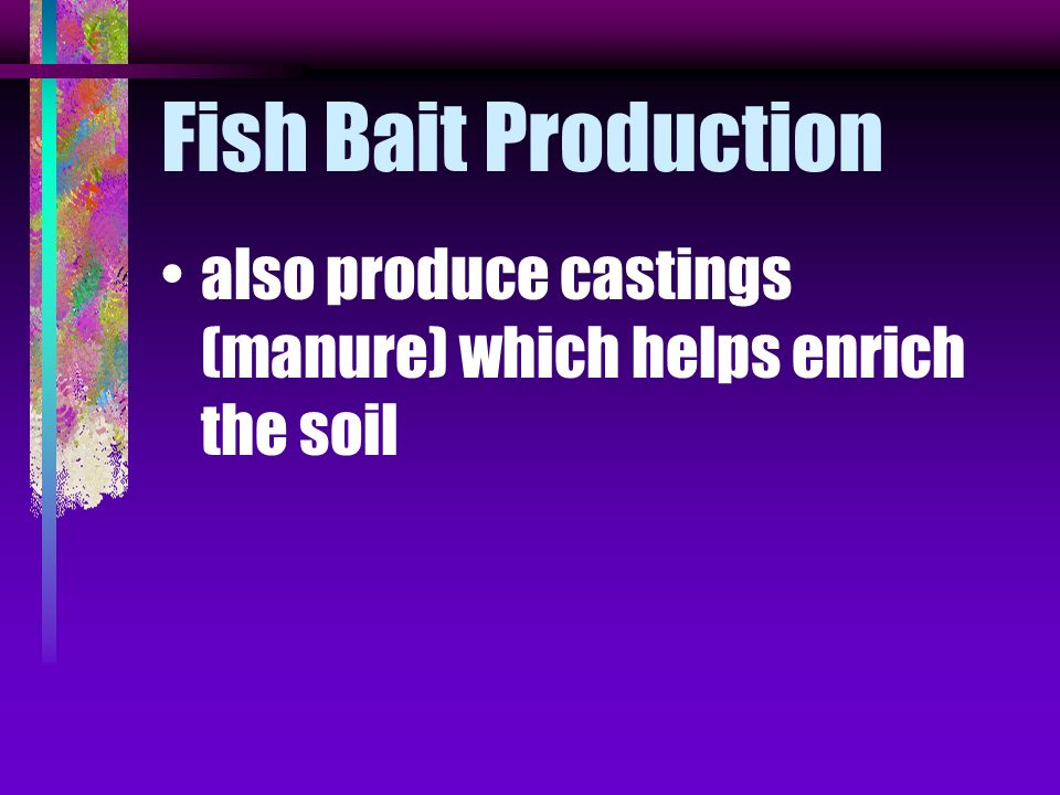 Fish Bait Production also produce castings (manure) which helps enrich the soil