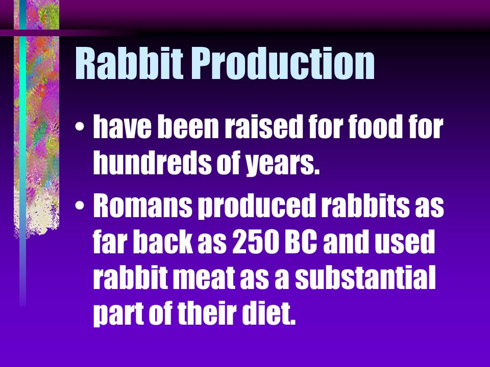 Rabbit Production have been raised for food for hundreds of years.