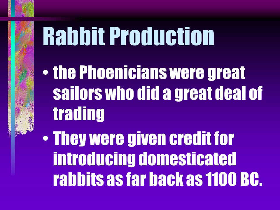 Rabbit Production the Phoenicians were great sailors who did a great deal of trading.