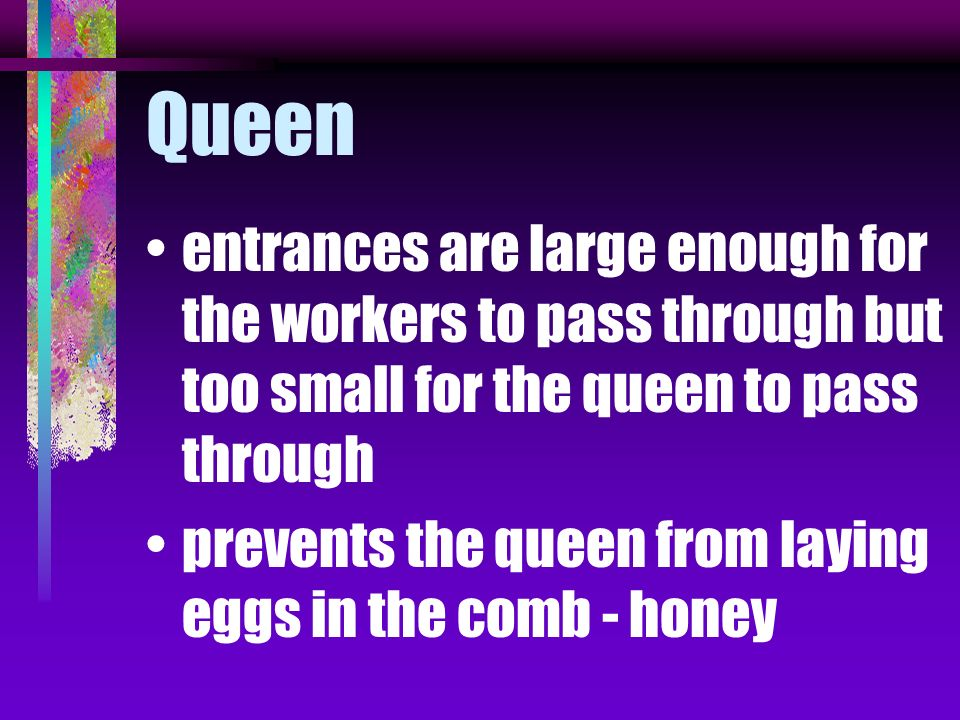 Queen entrances are large enough for the workers to pass through but too small for the queen to pass through.