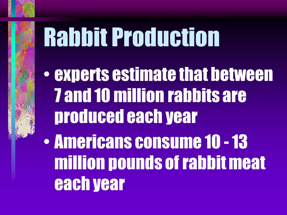 Rabbit Production experts estimate that between 7 and 10 million rabbits are produced each year.