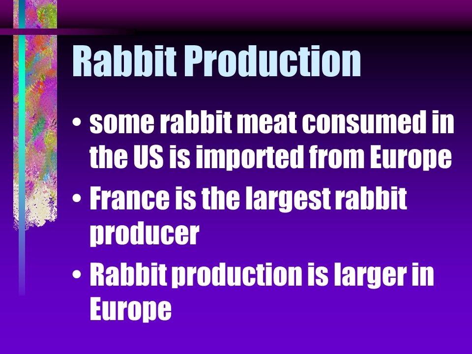 Rabbit Production some rabbit meat consumed in the US is imported from Europe. France is the largest rabbit producer.