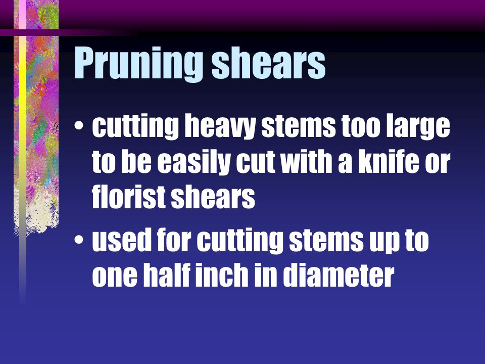 Pruning shears cutting heavy stems too large to be easily cut with a knife or florist shears.