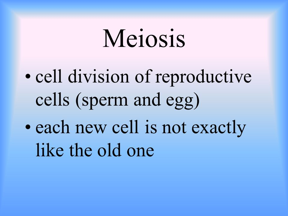 Meiosis cell division of reproductive cells (sperm and egg)
