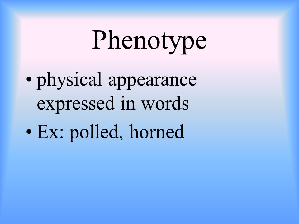 Phenotype physical appearance expressed in words Ex: polled, horned
