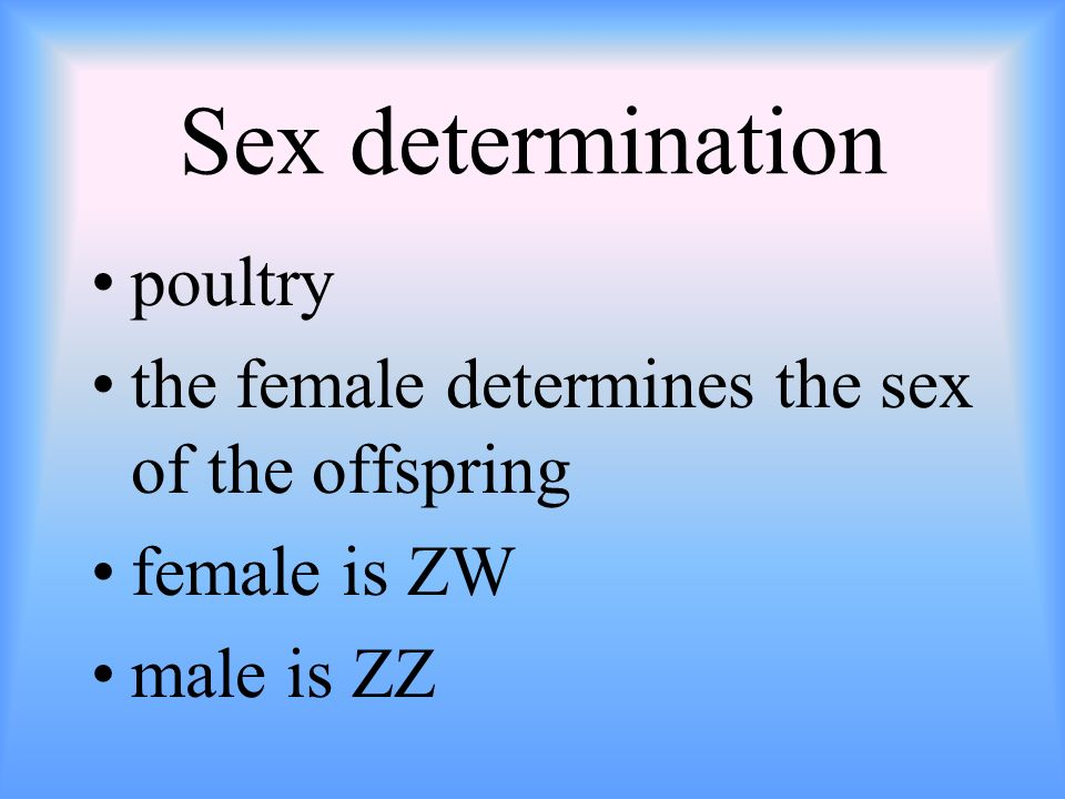 Sex determination poultry