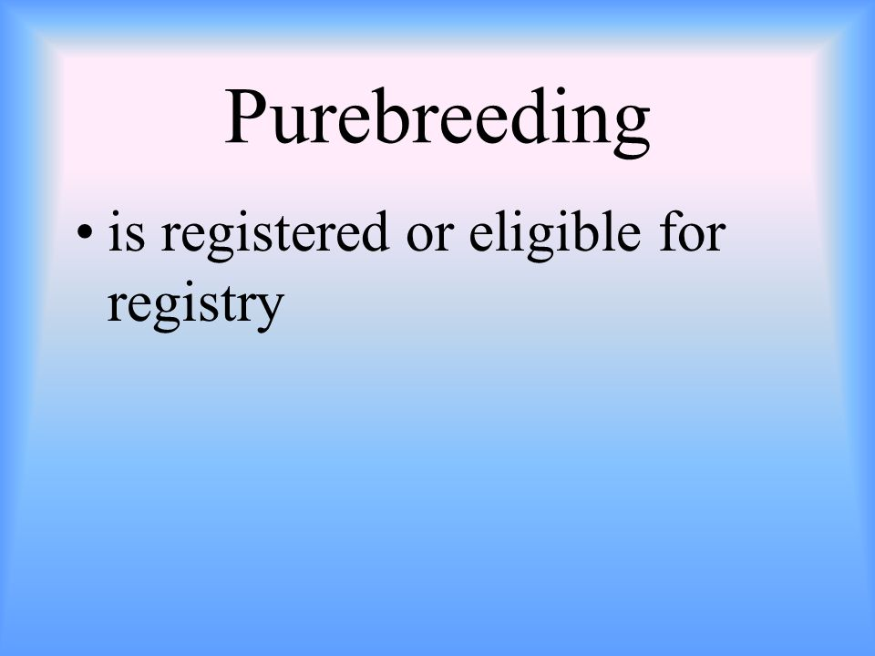 Purebreeding is registered or eligible for registry