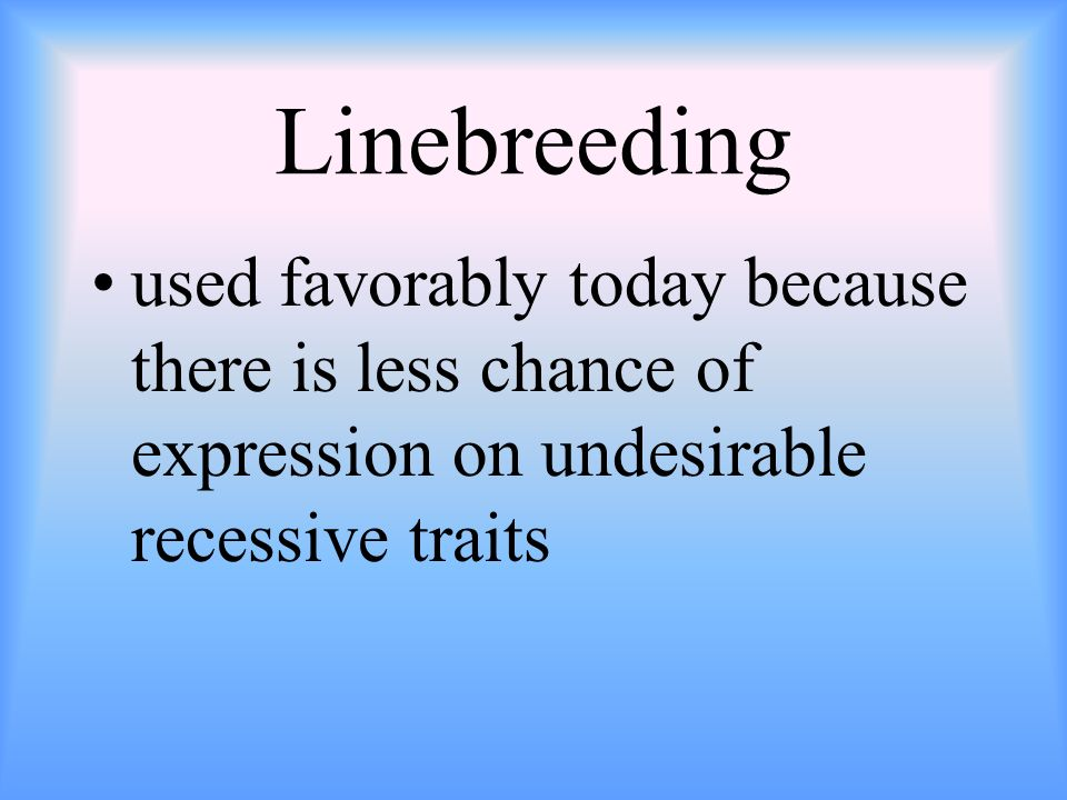 Linebreeding used favorably today because there is less chance of expression on undesirable recessive traits.