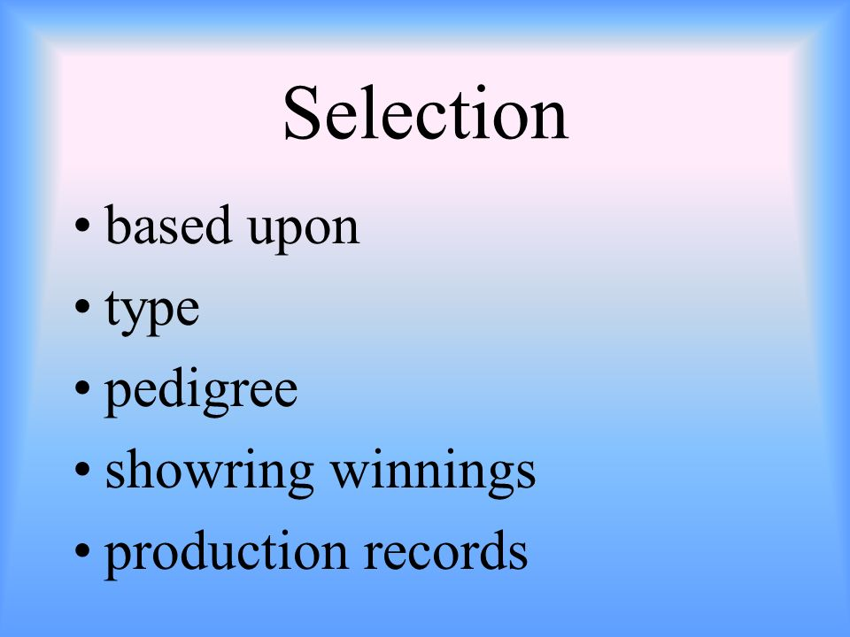 Selection based upon type pedigree showring winnings